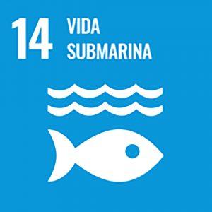 ODS Vida subamarina